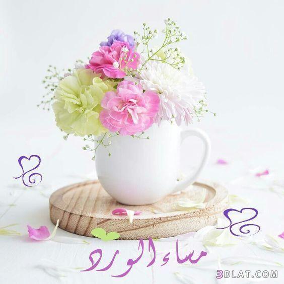 مسجات مسائية بالصور 2018 صور مساء الخير للفيس مسجات وتوبيكات مساء الخير للجميع Good Morning Images Flowers Good Evening Wishes Beautiful Roses