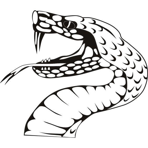 snake-viper-wall-art-sticker-31.jpg (1200×1200)