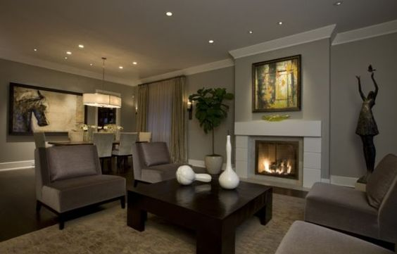 Matching Colors With Walls And Furniture Elegant Living Room Transitional Living Rooms Living Dining Room