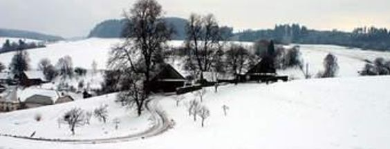 """Ladovská zima... """"Ladovská zima za okny je a srdce jímá bílá nostalgie Ladovská zima děti a sáně a já jdu s nima do chrámu Páně..."""" Text této písně mě napadá pokaždé, když se podívám z okna ven do spící krajiny, která je nyní zasypaná sněhem. O také ta Ladova zimní vesnice, nádherné kresby Vánoční i zimní, která mě vždy dojmou a zárověň spolehlivě ..."""
