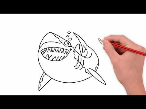 Shark Coloring Shark Drawing Shark Coloring Page رسم تلوين تلوين سمك القرش Youtube Shark Coloring Pages Drawing For Kids Coloring For Kids