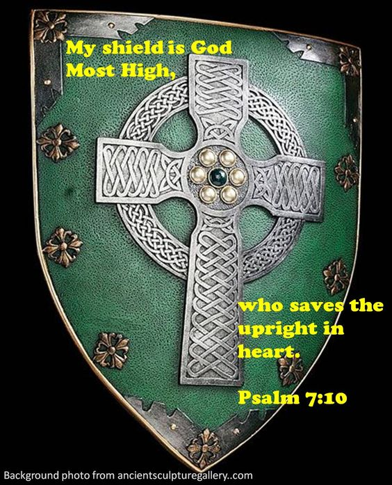 Psalm 7:10 ~ Praise the Lord our God for He is our shield and saves the upright in heart!