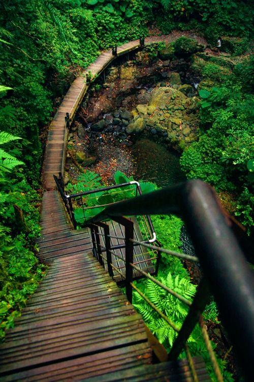 Long Stairs   (byHanson Mao)