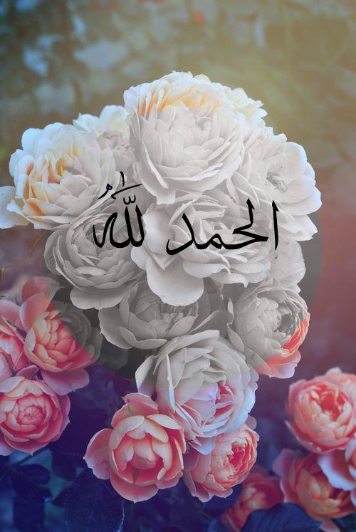 الحمد لله على الزهور الحمد لله الحمد لله: جميع يشيد يرجع إلى الله alone.Originally وجدت على: 7iah-althker