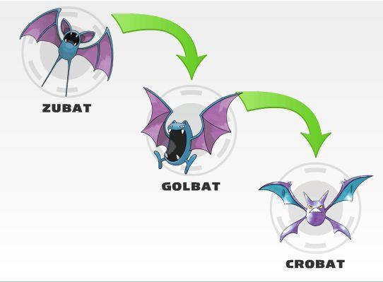 Zubat Evolution Pokemon Pinterest Evolution Search And Image Search