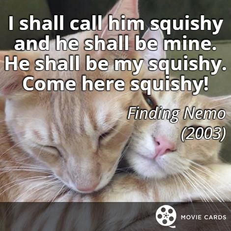 Do you have a squishy? #Caturday #FindingNemo #FindingDory http://moviecards.us/movies/lines/finding-nemo/i-shall-call-him-squishy-and-he-shall-be-mine/106