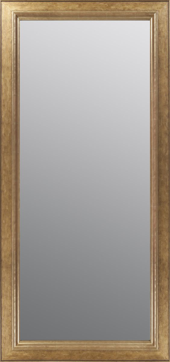 Surya Lucerne Topaz 3 5/8(24 x 58-No Bevel) Wall Mirror
