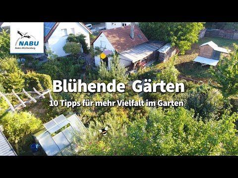 Bluhende Garten 10 Tipps Fur Mehr Vielfalt Im Garten Youtube Garten Tipps Gartentipps