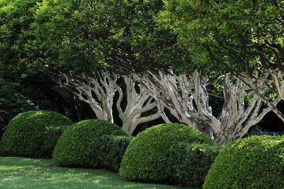 Pinterest le catalogue d 39 id es for Jardin anglais caracteristiques