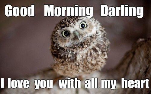 75 Funny Good Morning Memes To Kickstart Your Day Funny Good Morning Memes Morning Memes Funny Morning Memes