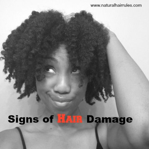 3 Major Types of Hair Damage and How to Prevent Them - Natural Hair Rules!!!