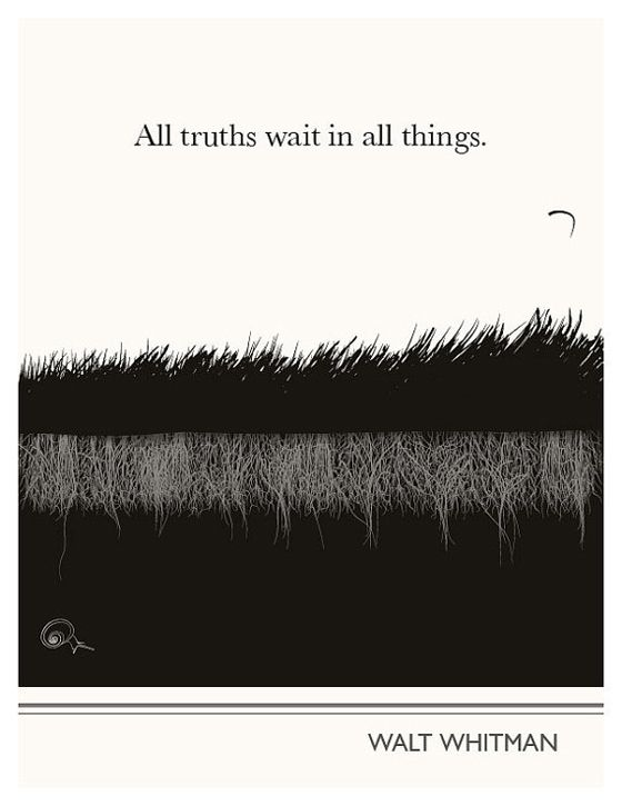 """All truths wait in all things."" Walt Whitman"