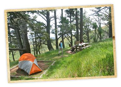 Hawk Camp in the Marin Headlands (near Tennessee Valley)