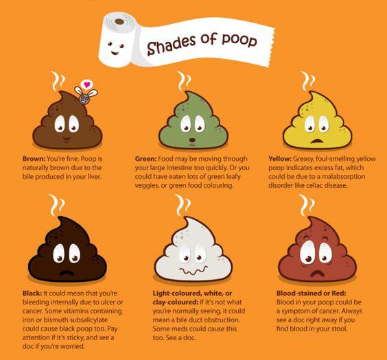 16 ways to Achieve Healthy Poop Kalena Gut Health Pinterest - stool color chart