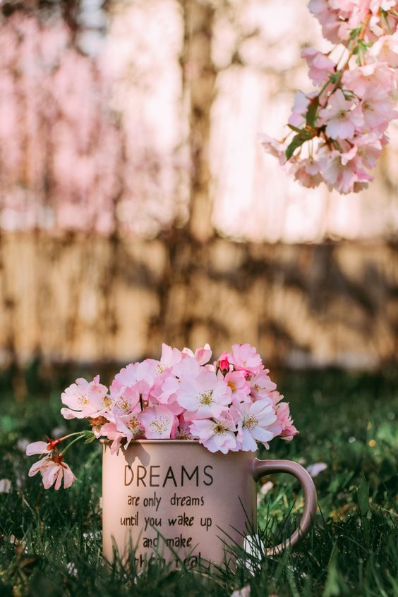 Beautiful Flowers In Cup Wallpaper Beautiful Flowers Flowers Flower Images Coolest flower tree wallpaper images