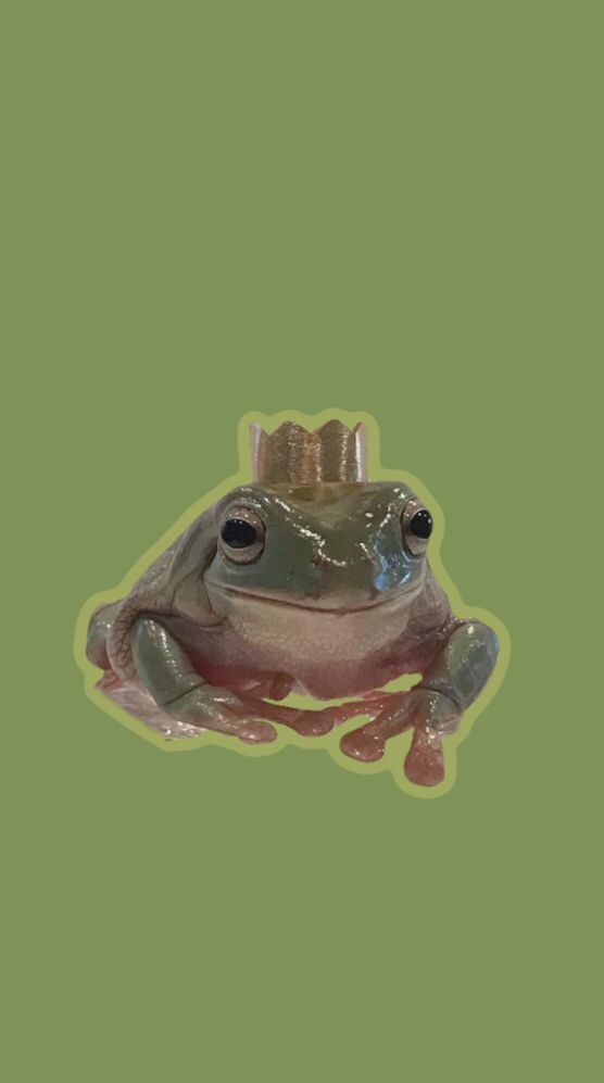 Pin By Evanescentwitch On Frog Vibes Cute Frogs Frog Pictures Cute Wallpapers