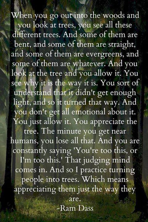 people vs trees