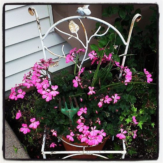 Love my chair planter (: