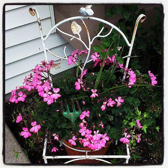 Love my chair planter (: