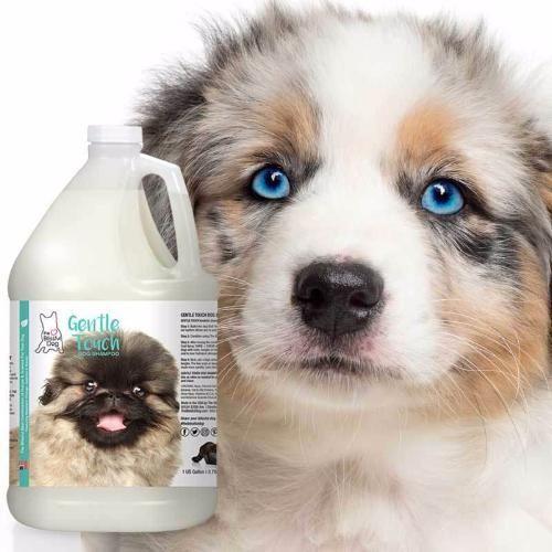 Gentle Touch Dog Shampoo Dog Shampoo Best Dog Shampoo Puppy