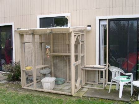 Outdoor Enclosure For Cats Ok I Know This Is Totally Weird But If Tried To Put A Leash On My Cat She D Rip Face Off Enclosures Pinterest