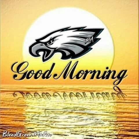 Good Morning My Fellow Philadelphia Phanatics Rise And Shine As It S Al Philadelphia Eagles Memes Philadelphia Eagles Football Philadelphia Eagles Wallpaper