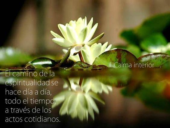 El camino de la espiritualidad se hace día a día, todo el tiempo, a  través de los actos cotidianos.