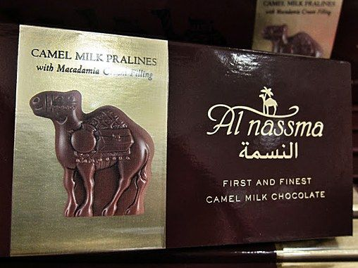 I spotted this amazing caravan of camel milk chocolate camels at Doha International Airport. They are manufactured by Al Nassma, a joint venture between an Austrian company and the ruler of Dubai, Sheik Mohammed bin Rashid al Maktoum, who owns one of the world's largest camel farms, 2,300 head and counting.