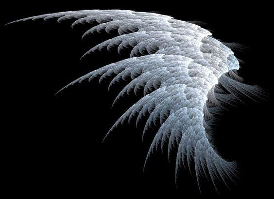 Fallen Angel Wings | Fallen Angel Wings ?: Angel wings falling ...