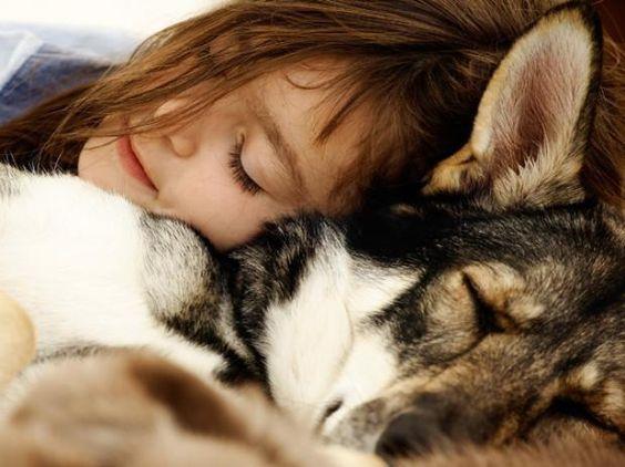 Las mascotas pueden enseñarle a los niños - Conocidas son las terapias sanadoras con animales, ya que estos poseen tal calidad de nobleza y energía positiva