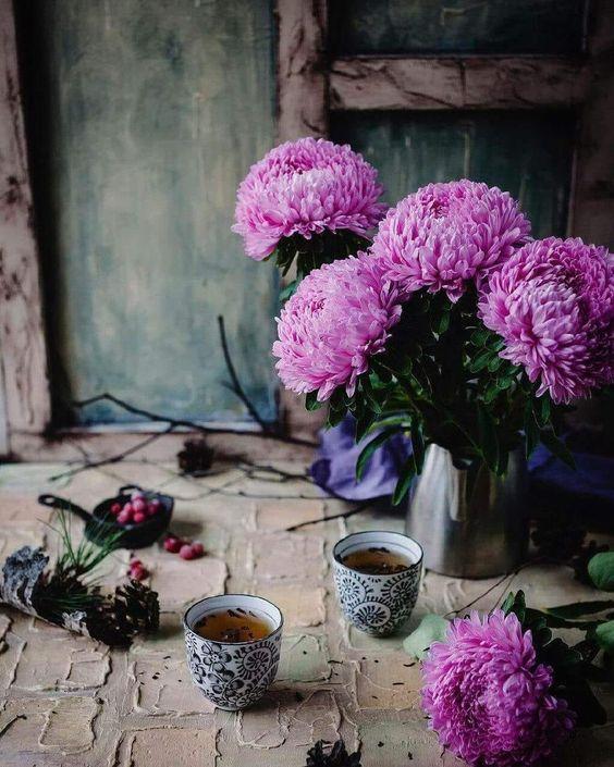 Pin By Monica Ontiveros On Tea Wah Taj Aster Flower Beautiful Flowers Still Life Photography