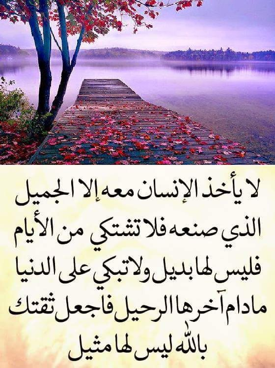 حكم ومواعظ Funny Arabic Quotes Beautiful Arabic Words Arabic Quotes