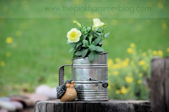 flour sifter planter, sweet. always looking for non-traditional planter ideas