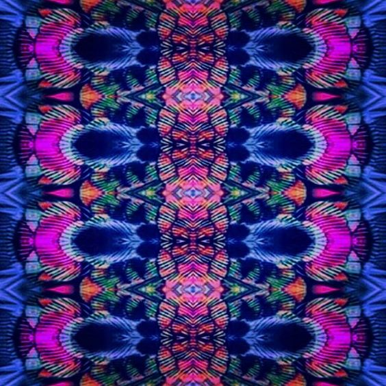 Plumas #textildesing #textile #pattern #rapport #print #estampado #dspattern #linear #homedecor #cushion #colours #inspiration #birds #paperdesign #feathers#swimsuit #designlovers