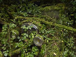 """Spooky prints of cars not faring so well against mother nature. Peter Lippmann aptly named this series, """"Paradise Parking.""""    Where Your Car Goes When It's Towed - Paradise Parking"""