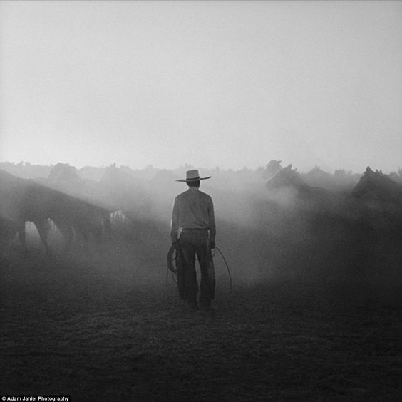 the black cowboy essay Held at greenfield farm in rembert , south carolina 4585 spencer rd black cowboy festival may 5 - may 8, 2016 (may 5, 2016 --- roundup day ).