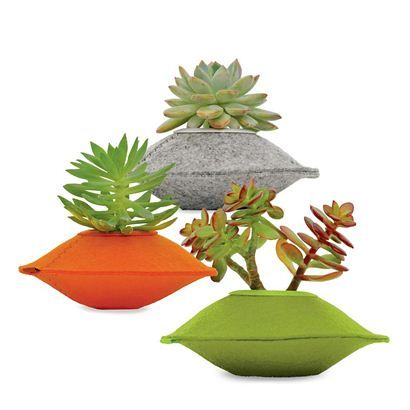 Plant Pod Planter