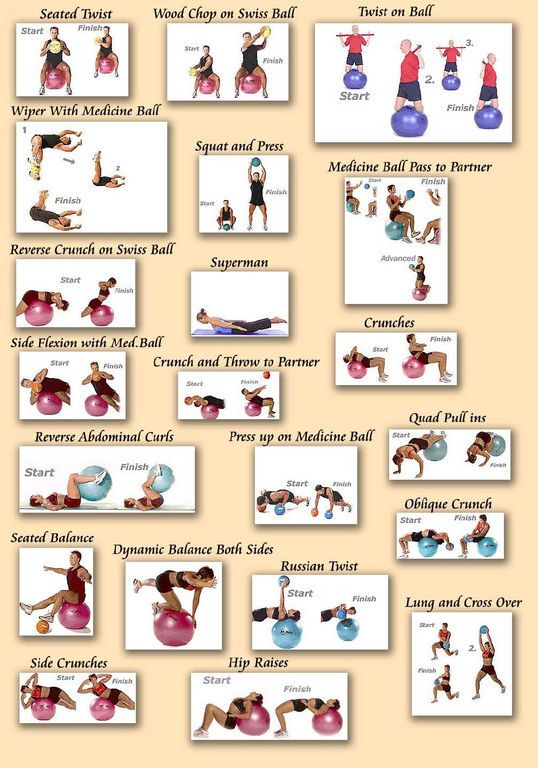 swissball musculation 20 exercices de gainages et renforcement avec le Swissball