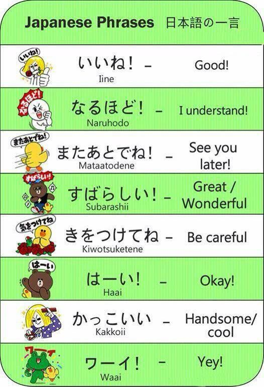 how to learn basic japanese language