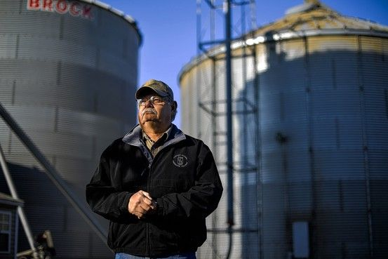 Bucking a longtime trend, some farmers are planting seeds that aren't genetically modified, realizing non-GMO crops fetch a premium. They say they are driven by economics, not principle.