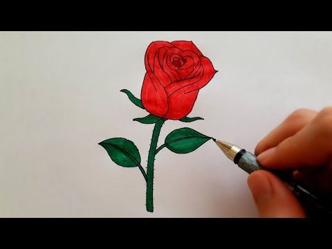 Adim Adim Gul Cizimi Cok Kolay Nasil Gul Cizilir How To Draw A Rose Super Easy Drawing Flowers Youtube Super Easy Drawings Flower Drawing Easy Drawings