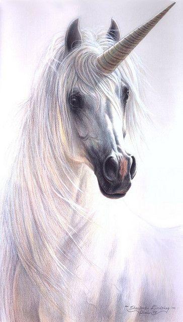 El unicornio 57d7327826998414a671ed174094f212