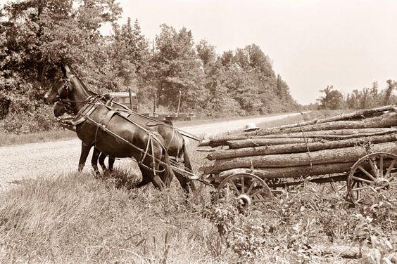 http://old-photos.blogspot.com/2014/10/hauling-firewood.html?utm_source=feedburner