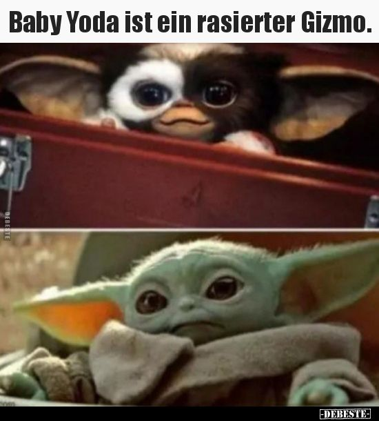 Baby Yoda Ist Ein Rasierter Gizmo Lustige Bilder Spruche Witze Echt Lustig Witze Lustig Lustig Lustige Bilder