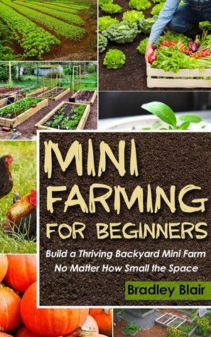 Build A Thriving Backyard Mini Farm, No Matter How Small The Space