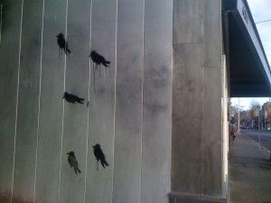 Someone put some birds on it.