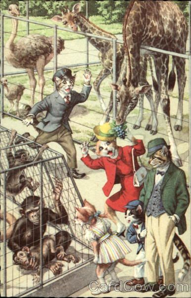 Cats at the Zoo - Publisher: Alfred Mainzer