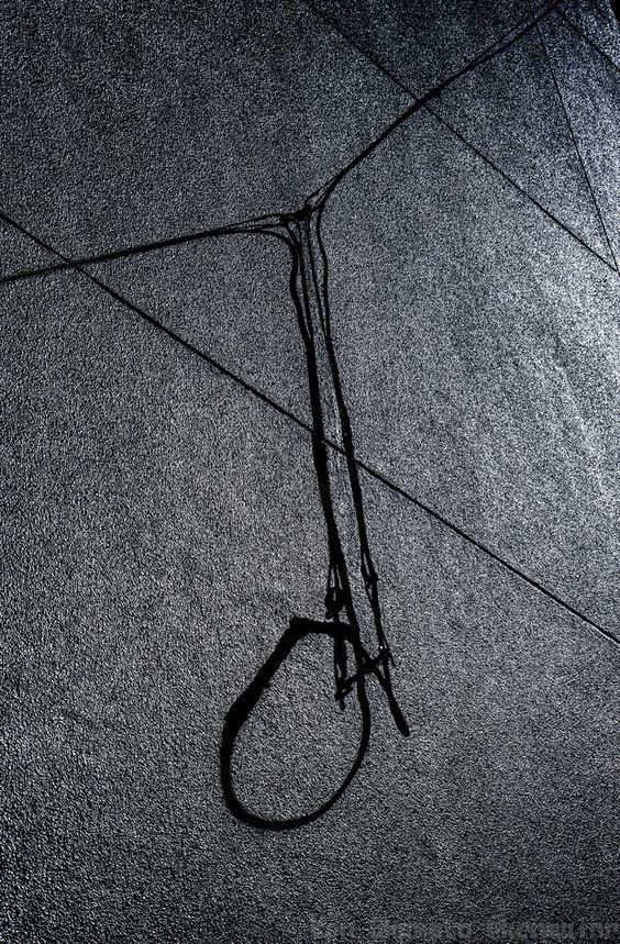 Hanging Ring of Rope
