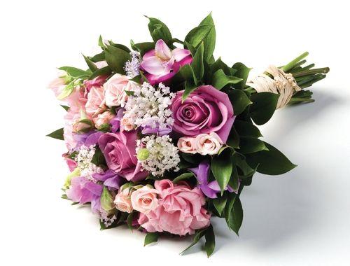 Flores roxas - Pesquisa Google