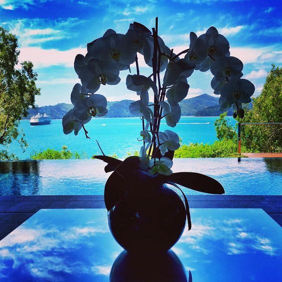 #arrivedinparadise #dream #shadesofblue #ocean #island #tropicalfeeling #luxury #qualitytime #relaxation #greatbarrierreef #hamiltonisland #qualia by andrea.i.s http://ift.tt/1UokkV2